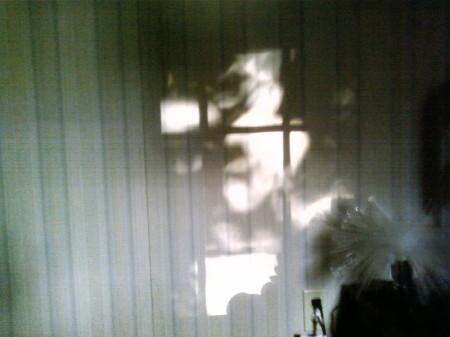 shadowcast IV